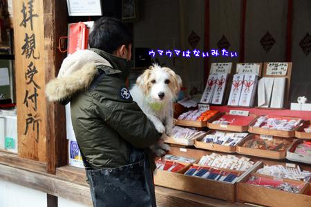 170109_yosino10.jpg