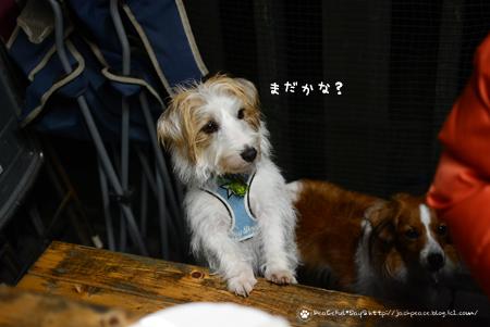 171121_awaji28.jpg