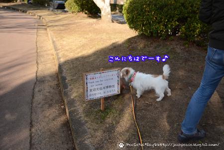 180112_fudoki.jpg