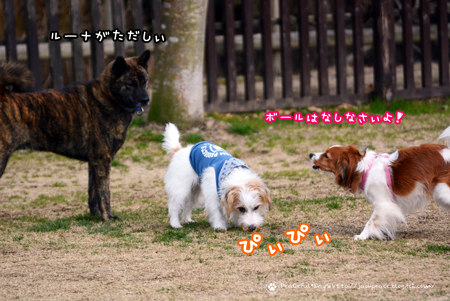180130_yuasa1.jpg