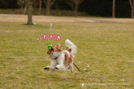 180215_kata14.jpg