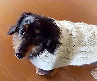 手編み セーター