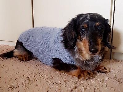 セカンドセーター