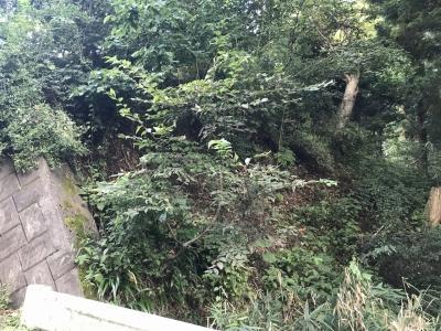 道路東側の遺跡指定範囲の南端あたり
