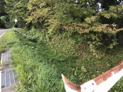 法蓮寺西側にある、堀の残滓のような地形