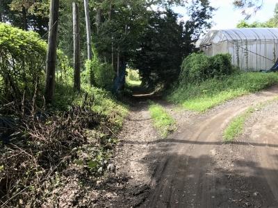 かつての堀跡を利用した農道か?