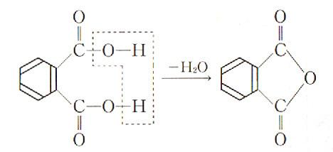 03_フタル酸