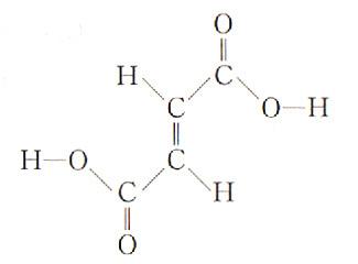 05_フマル酸