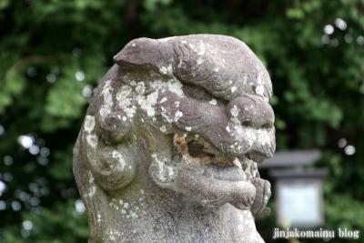 杉山神社(緑区三保町)20