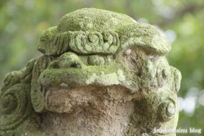 杉山神社(緑区青砥町)22