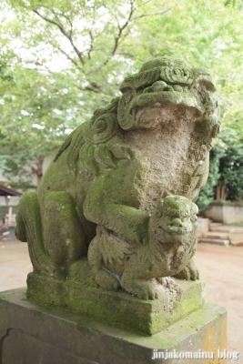 杉山神社(緑区青砥町)17