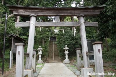杉山神社(緑区西八朔町)3