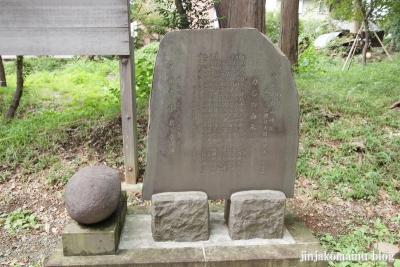 杉山神社(緑区西八朔町)4