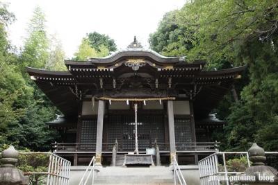 杉山神社(緑区西八朔町)7