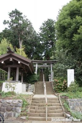 杉山神社(緑区西八朔町)1