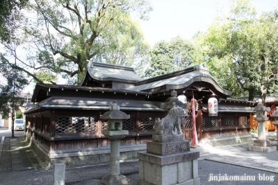 田中神社(左京区田中西樋ノ口町)12