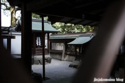 田中神社(左京区田中西樋ノ口町)18