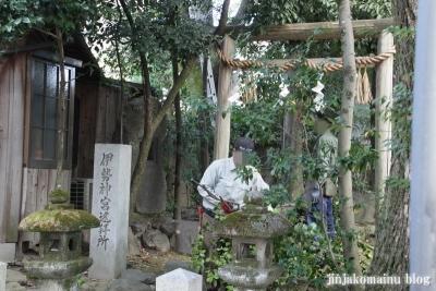 田中神社(左京区田中西樋ノ口町)31