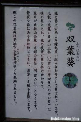日吉大社(大津市坂本)48