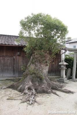 長澤神社(大津市坂本)4