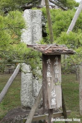 唐崎神社(大津市唐崎)11