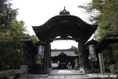 三尾神社(大津市円城寺町)10