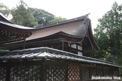 三尾神社(大津市円城寺町)14