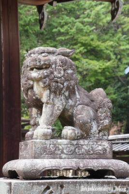 三尾神社(大津市円城寺町)28