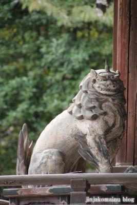 三尾神社(大津市円城寺町)33