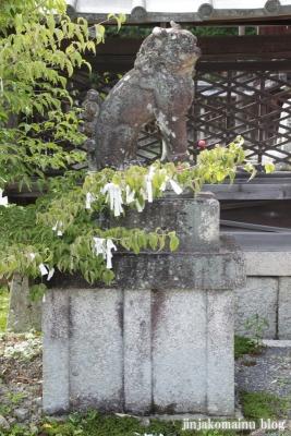 三尾神社(大津市円城寺町)40