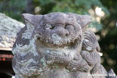 岩座神社(大津市西の庄)33