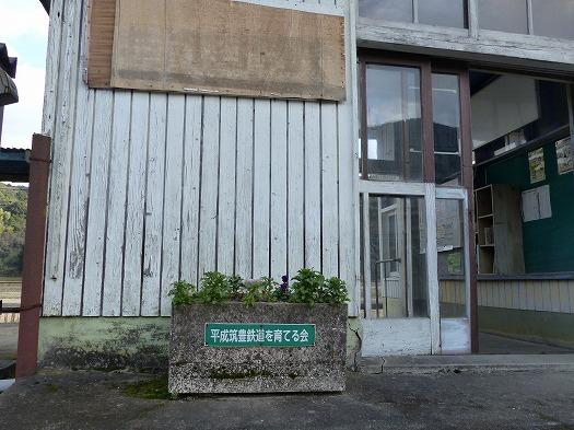 201801sakiyamahi (8)