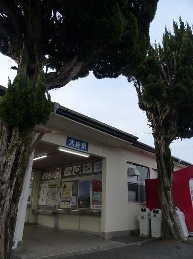 20180205大神 (10)