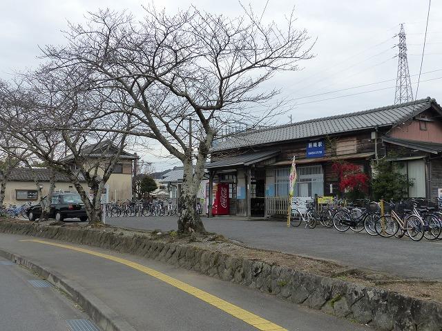 20181017kumasaki (10)