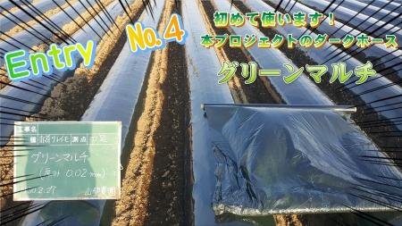 greenmaru.jpg