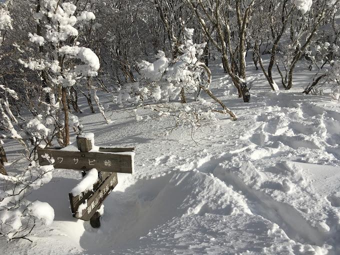 2018武奈ヶ岳/ワサビ峠