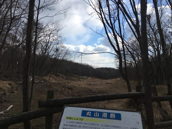 2018大岩ヶ岳/湿原