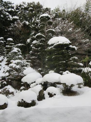 20180112雪景色2