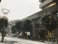 雪の区議会棟前