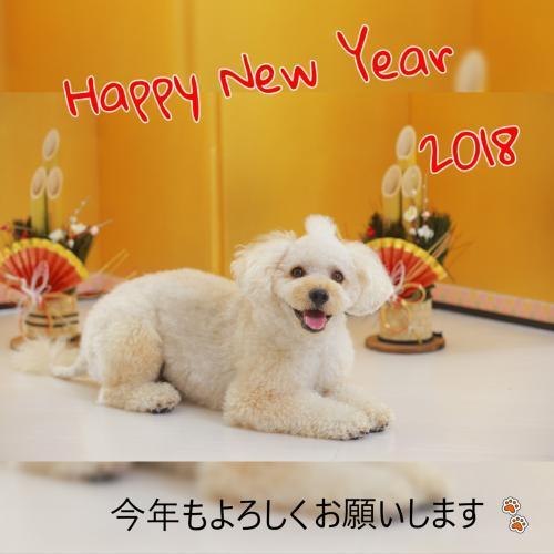 2018-02-01-21-29-25_convert_20180104171353.jpeg