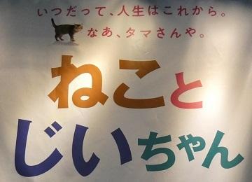 4 オリジナル缶バッヂ 記念品進呈