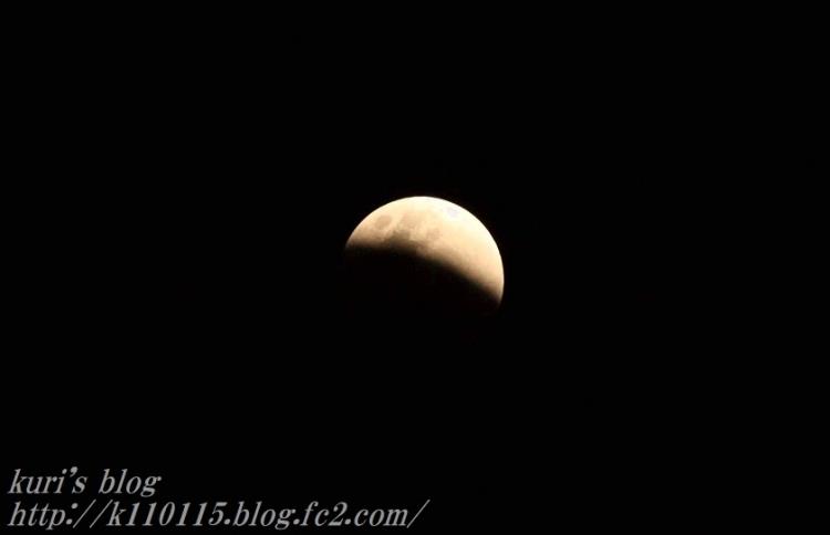 20180131皆既月食 (2)