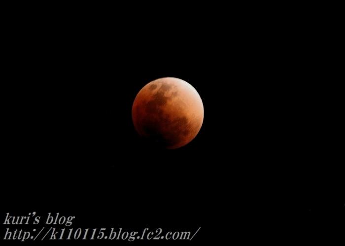 20180131皆既月食 (3)