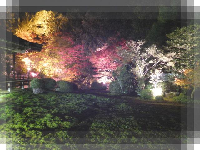 京都の旅11