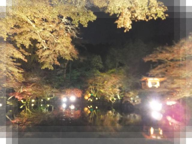 京都の旅18