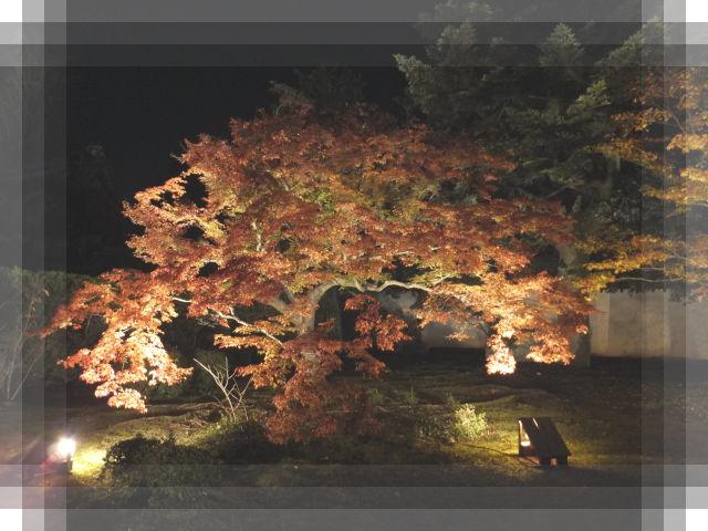 京都の旅14