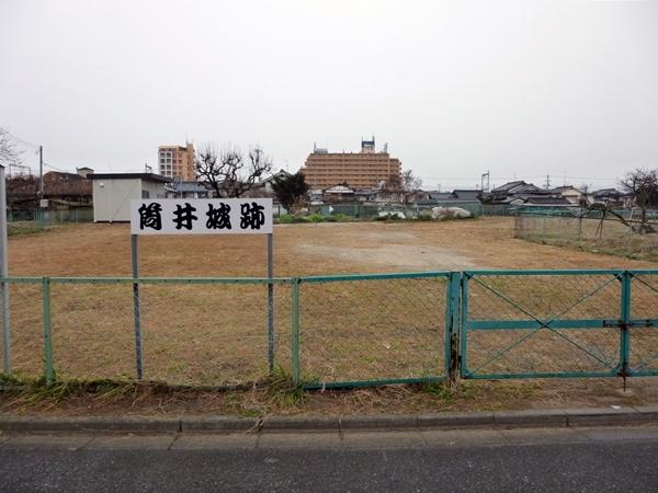 筒井城_表紙