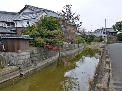 稗田環濠_濠2