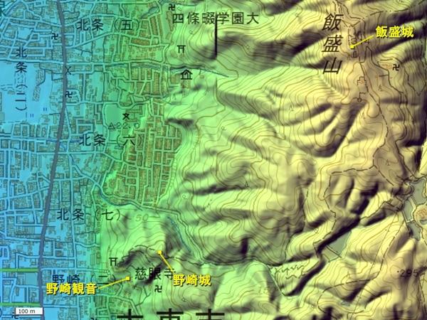 野崎城地形図