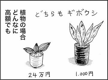 kfc01098-6